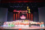新加坡金狮奖青少年大赛